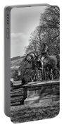 Viscount Gough On Horseback. Portable Battery Charger