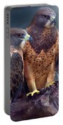 Vision Of The Hawk Portable Battery Charger