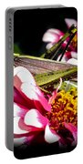 Visiting A Zinnia Portable Battery Charger