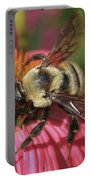 Visitor Up Close Coneflower  Portable Battery Charger