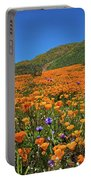 Vivid Memories Of The Walker Canyon Superbloom Portable Battery Charger