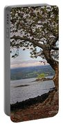 Volcano Through The Tree Portable Battery Charger