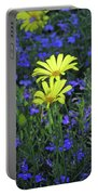 Voltage Yellow And Electric Blue 06 Portable Battery Charger