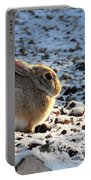 Wabbit Portable Battery Charger