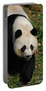 Waddling Giant Panda Bear In A Grass Field Portable Battery Charger
