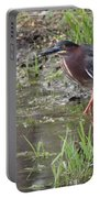 Wading Green Heron Portable Battery Charger