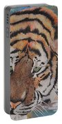 Wading Tiger Portable Battery Charger