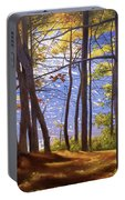 Walden Pond IIi Portable Battery Charger