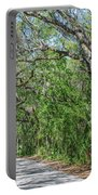 Walking In The Woods Of Amelia Island Portable Battery Charger