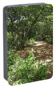 Walking Path Portable Battery Charger