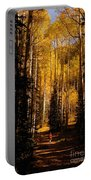 Walking With Aspens Portable Battery Charger