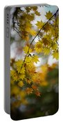 Walks In The Autumn Garden Portable Battery Charger