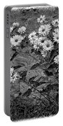 Wallflower Ain't So Bad Bw Portable Battery Charger