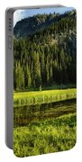 Wallowas - No. 8 Portable Battery Charger