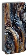 Walnut Canyon Tree Portable Battery Charger