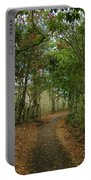 Wariman Pathway Portable Battery Charger