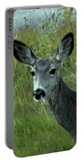 Wary Doe Portable Battery Charger