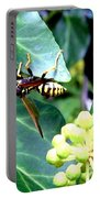 Wasp On The Ivy Portable Battery Charger