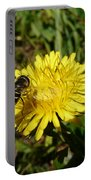 Wasp Visiting Dandelion Portable Battery Charger