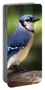 Watchful Blue Jay Portable Battery Charger