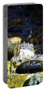 Water Dancer 4  Portable Battery Charger