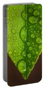 Water Droplets On Lemon Leaf Portable Battery Charger