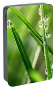 Water Drops On Spring Grass Portable Battery Charger