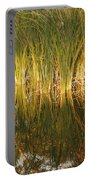 Water Grass In Sunset Portable Battery Charger