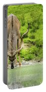 Water Hole Portable Battery Charger