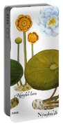 Water Lily, 1613 Portable Battery Charger
