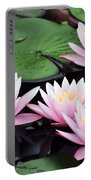 water lily 91 Sunny Pink Water Lily Portable Battery Charger
