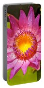 Water Lily After Rain 4 Portable Battery Charger