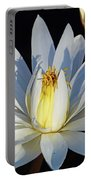 Water Lily At Dusk Portable Battery Charger