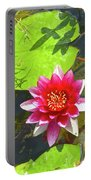Water Lily In Pond Portable Battery Charger