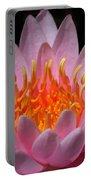 Water Lily On Fire Portable Battery Charger