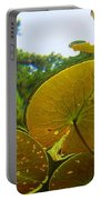 Water Lily Sky Portable Battery Charger