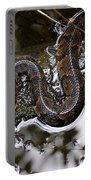 Water Moccasin Portable Battery Charger