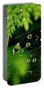 Water Orbs In Cobweb. Portable Battery Charger