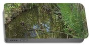 Water Pond Reflection In Peters Canyon Portable Battery Charger