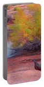Magic Puddle At Canyon Lands Portable Battery Charger