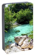 Water Shallows Portable Battery Charger
