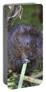 Water Vole A Chomp Portable Battery Charger