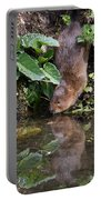 Water Vole Portable Battery Charger