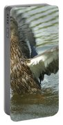 Watercovered Wingflapper Portable Battery Charger