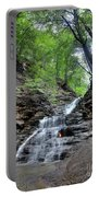 Waterfall And Natural Gas Portable Battery Charger
