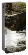 Waterfall Times Two Portable Battery Charger