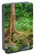 Waterfalls And Banyans Portable Battery Charger