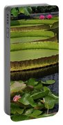 Waterlilies North And South Portable Battery Charger