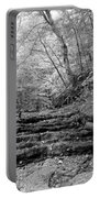 Waterscape In Bw Portable Battery Charger