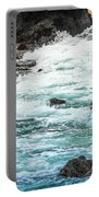 Wave Action Portable Battery Charger